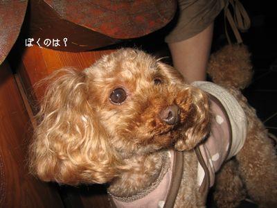 IMG_8996ふぇ.jpg