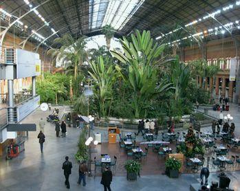 アトーチャ駅の中はジャングル