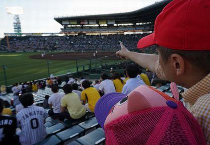 パパと野球観戦