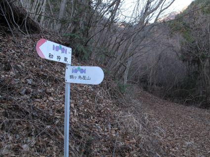 徒渉して上がった林道.jpg
