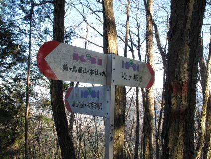 唐沢橋方面と近ヶ坂橋方面の分岐.jpg