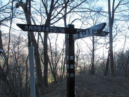 林道の道標.jpg