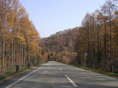 せせらぎ街道秋の雰囲気