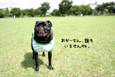 元浜公園です