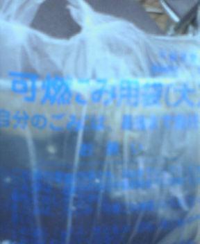 20060814_30510.jpg