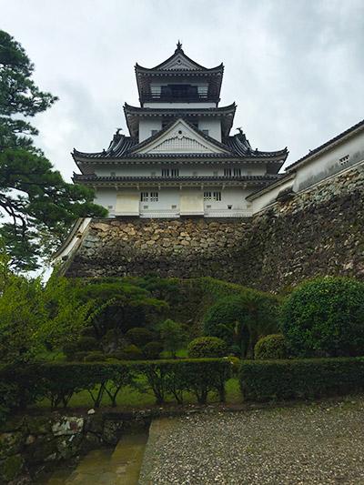 kochiawa11.jpg