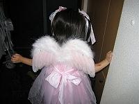 天使の羽(後)