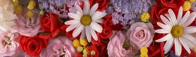 花のヘッダー