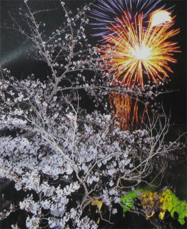 桜まつり花火