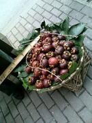上海の果物
