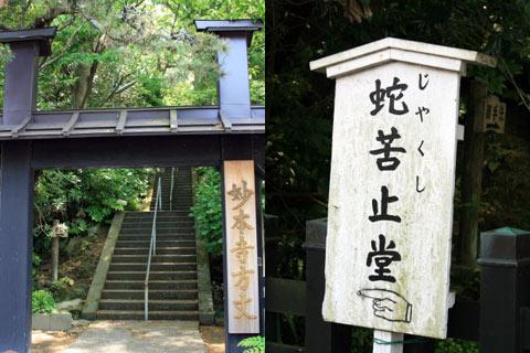 妙本寺(鎌倉)門