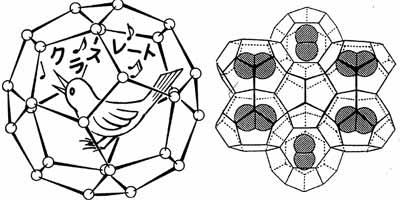 クラスレート:塩素分子のクラスレート結晶の構造模型