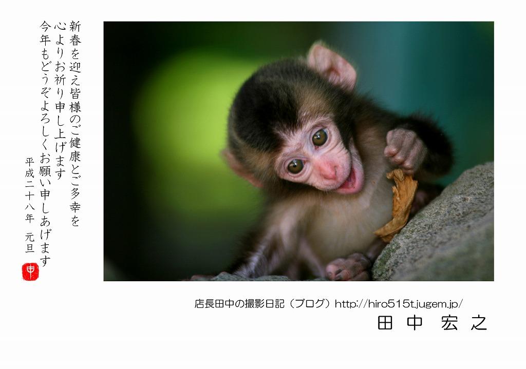 Y-田中_100.jpg