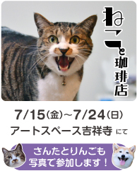 catandcoffee_AD4.jpg