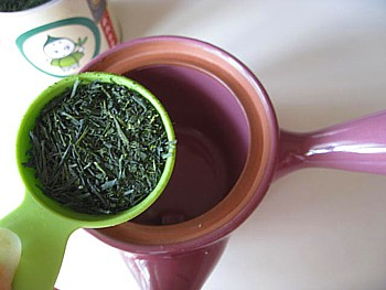 京都まろ茶11