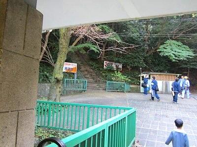 男山ケーブル山頂2