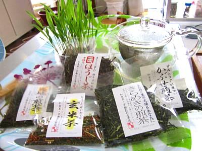京都おぶぶ茶9