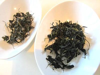 京都おぶぶ茶15