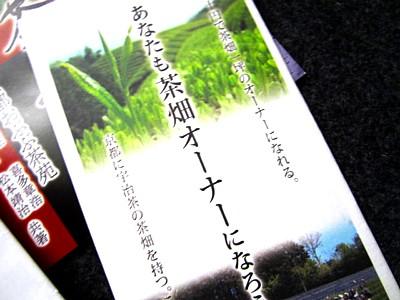 京都おぶぶ茶17