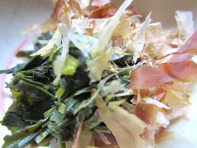 京都おぶぶ茶19
