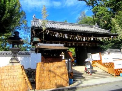 御香宮神社のお祭り33