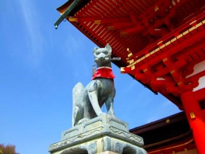 京都伏見稲荷神社7