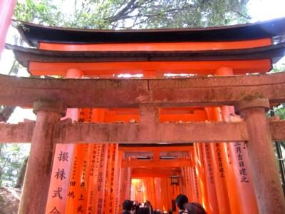 京都伏見稲荷神社19