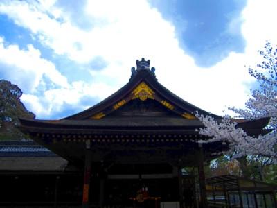 京都伏見稲荷神社21