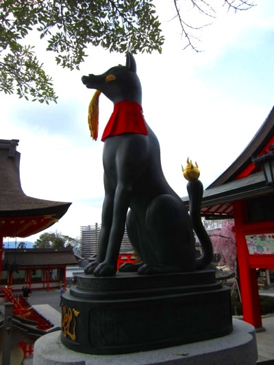 京都伏見稲荷神社22