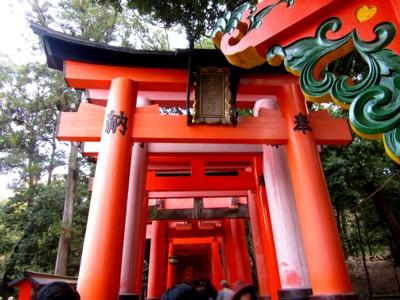 京都伏見稲荷神社25