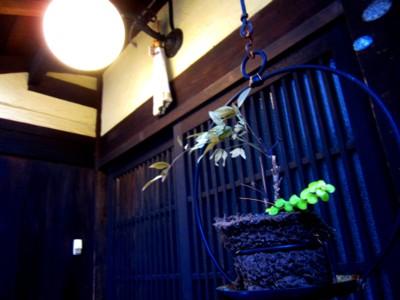 京都四条西木屋町周辺10