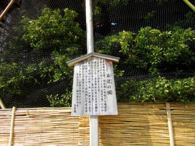 平安神宮8