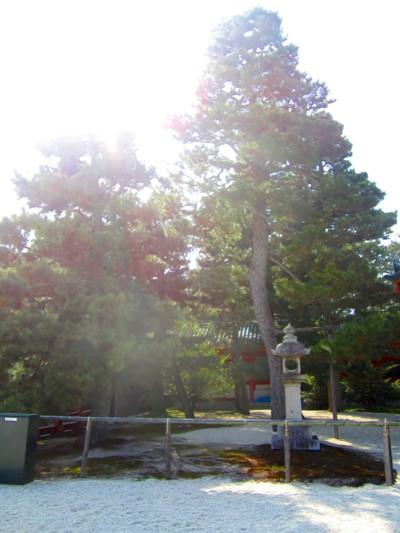 平安神宮11