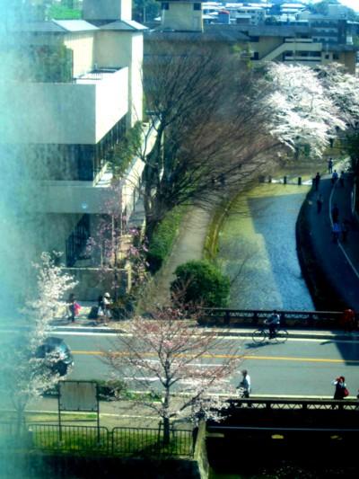 京都国立近代美術館9