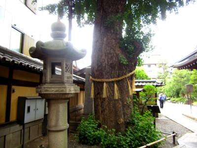 夏の本能寺7