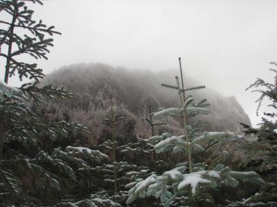 稲子岳方面