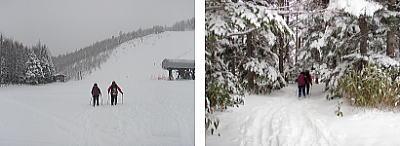スキー場を横切って