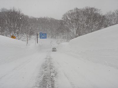 国道103号線