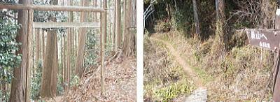 金比羅神社跡