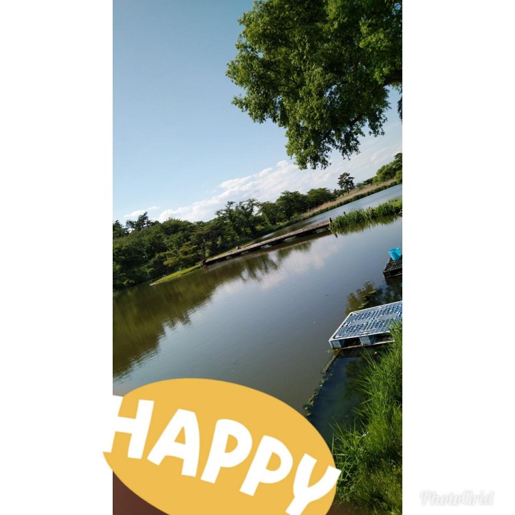 20190607140604_p.jpg