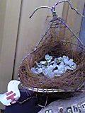 アルミ缶の小鳥の巣みたいだね☆.JPG