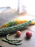 朝採りの野菜たち♪