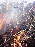 火が落ち着いてきたら 繭玉を焼いて食べるんです☆