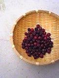 ジューンベリー収穫です♪.JPG