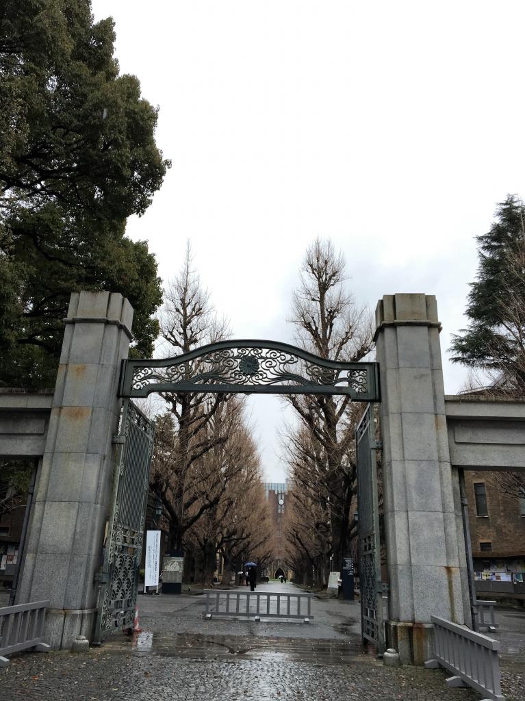 東京大学本郷キャンパス1