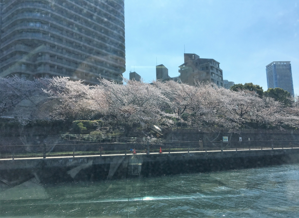 隅田川お花見クルーズ4