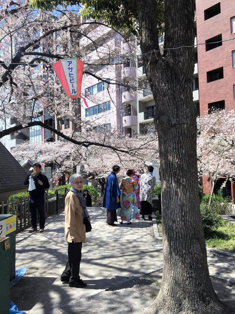 隅田川お花見クルーズ7