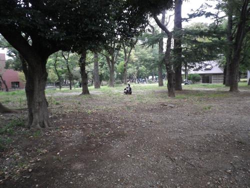 IMGP0174.jpg
