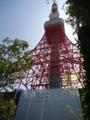 TANGO タンゴ テラスから東京タワー