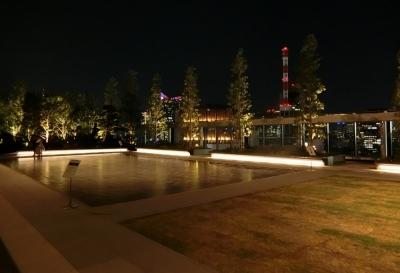 GINZA SIX 銀座シックス 屋上庭園 ROOFTOP GARDEN 夜景
